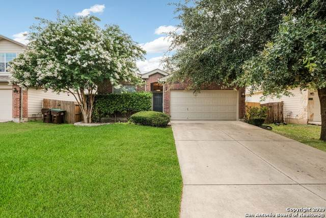 615 Campion Red, San Antonio, TX 78245 (MLS #1465157) :: Alexis Weigand Real Estate Group