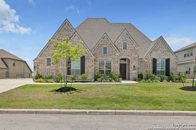 8114 Juliet Hill, San Antonio, TX 78256 (MLS #1465321) :: The Gradiz Group