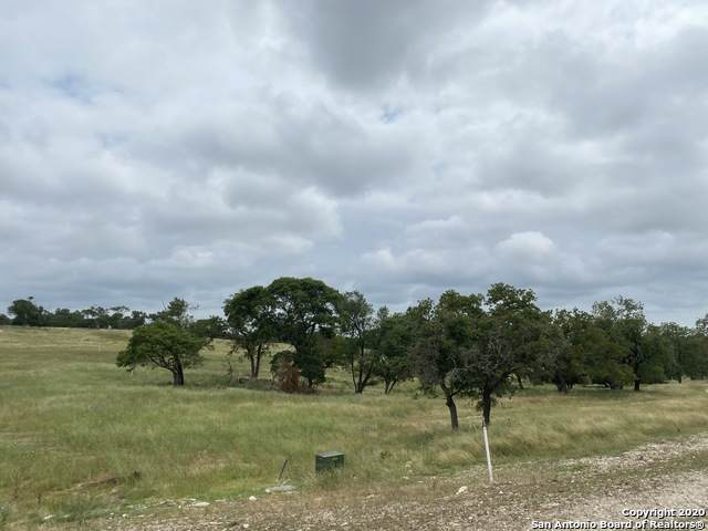 309 Inspiration Loop, Fredericksburg, TX 78624 (#1465364) :: The Perry Henderson Group at Berkshire Hathaway Texas Realty