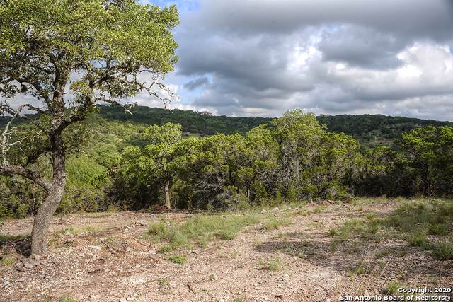 LOT 3 Cibolo Cliffs Road, Bulverde, TX 78163 (MLS #1465414) :: Neal & Neal Team
