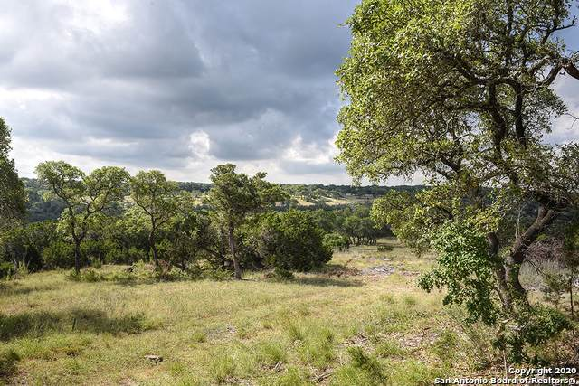 LOT 10 Cibolo Cliffs Road, Bulverde, TX 78163 (MLS #1465415) :: Neal & Neal Team
