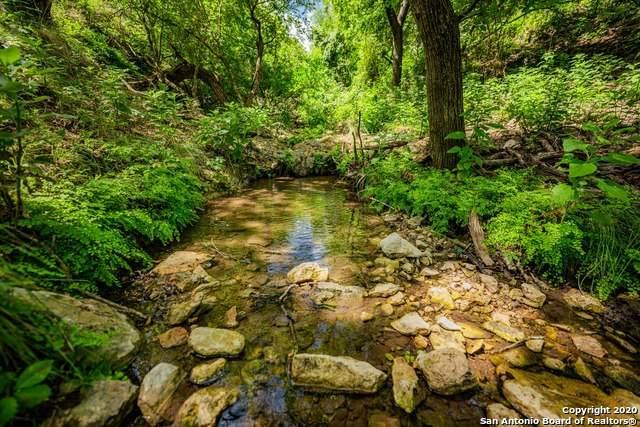 2576 Schneider-Moellering Rd, Fredericksburg, TX 78624 (MLS #1465604) :: Alexis Weigand Real Estate Group