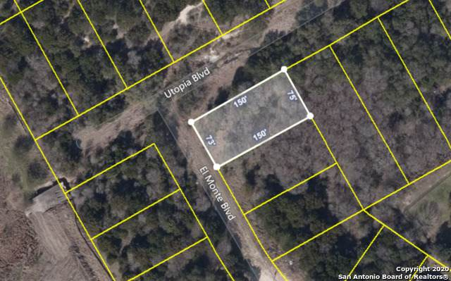 LOT 31 El Monte Blvd, Selma, TX 78154 (MLS #1465710) :: EXP Realty