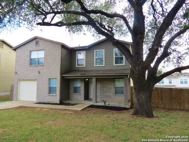 517 Hinge Fls, Cibolo, TX 78108 (#1466089) :: The Perry Henderson Group at Berkshire Hathaway Texas Realty