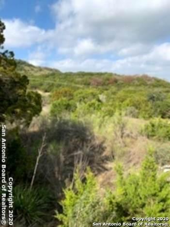 51 Vineyard Dr, San Antonio, TX 78257 (MLS #1466100) :: The Gradiz Group