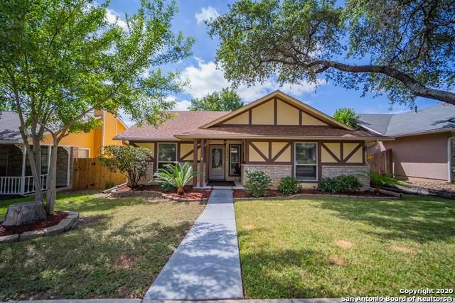 12134 Magnolia Blossom, San Antonio, TX 78247 (MLS #1466164) :: Alexis Weigand Real Estate Group