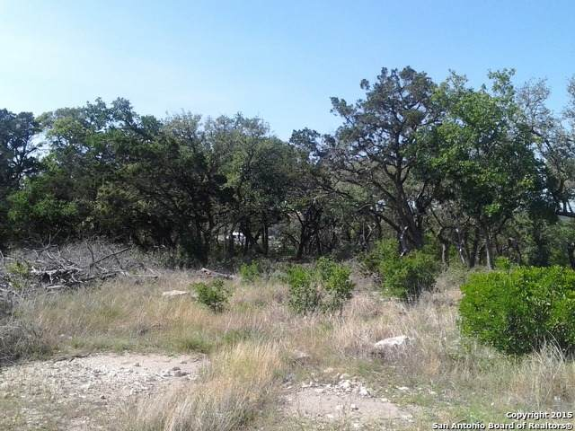 8615 Terra Mont Way, San Antonio, TX 78255 (MLS #1466199) :: ForSaleSanAntonioHomes.com
