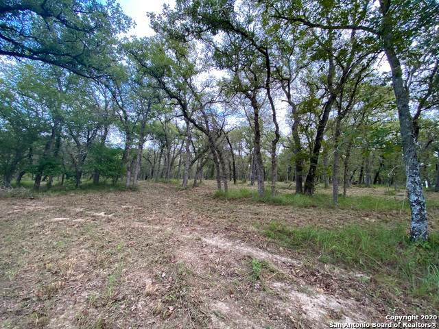 130 Turalura Ln, Floresville, TX 78114 (MLS #1466649) :: Alexis Weigand Real Estate Group