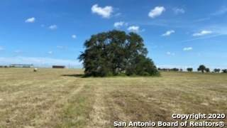 1279 County Road 317, La Vernia, TX 78121 (MLS #1466670) :: Reyes Signature Properties