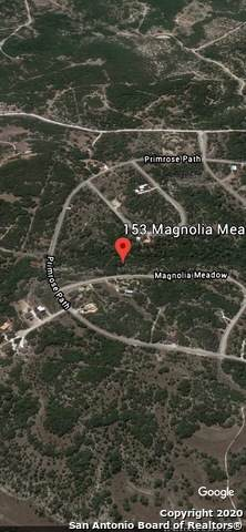 153 Magnolia Meadow, Canyon Lake, TX 78133 (MLS #1466678) :: Neal & Neal Team