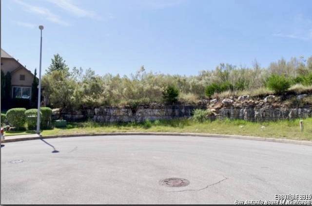 1006 Rock Shelter, San Antonio, TX 78260 (MLS #1466791) :: Carolina Garcia Real Estate Group