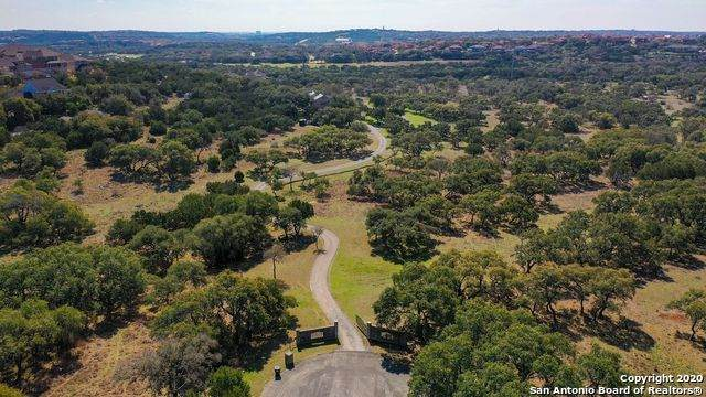 25702 Meadow Vis, San Antonio, TX 78260 (MLS #1466866) :: The Glover Homes & Land Group