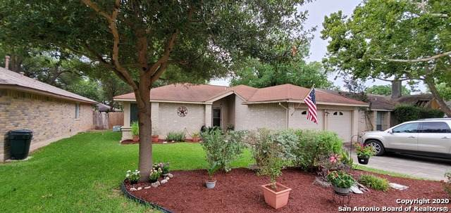 8104 Forest Dawn, Live Oak, TX 78233 (MLS #1466928) :: The Heyl Group at Keller Williams