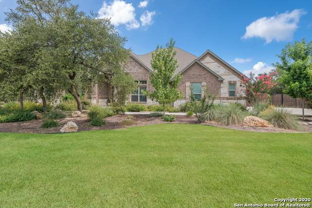 536 Solms Frst, New Braunfels, TX 78132 (MLS #1467099) :: Reyes Signature Properties