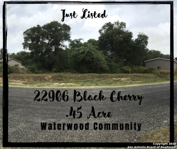 22906 Black Cherry, Elmendorf, TX 78112 (MLS #1467319) :: The Heyl Group at Keller Williams