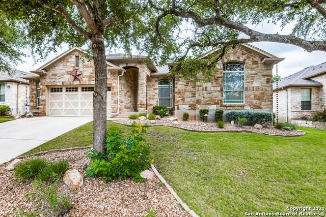 860 San Ignacio, New Braunfels, TX 78132 (MLS #1467350) :: 2Halls Property Team | Berkshire Hathaway HomeServices PenFed Realty