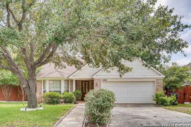 5803 Bear Lake Dr, San Antonio, TX 78244 (MLS #1467393) :: Reyes Signature Properties