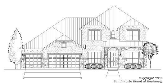23902 Ladera Ranch, San Antonio, TX 78261 (MLS #1467447) :: Alexis Weigand Real Estate Group