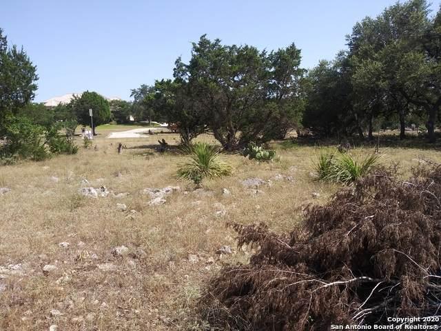 487 Lantana Mesa, Spring Branch, TX 78070 (MLS #1467921) :: The Gradiz Group