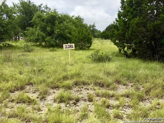 135 Zinnia Ave, Spring Branch, TX 78070 (MLS #1468061) :: The Gradiz Group