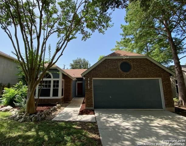 6815 Raintree Path, San Antonio, TX 78233 (MLS #1468226) :: The Heyl Group at Keller Williams