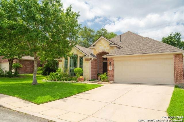 20811 Encino Ash, San Antonio, TX 78259 (MLS #1468695) :: Reyes Signature Properties