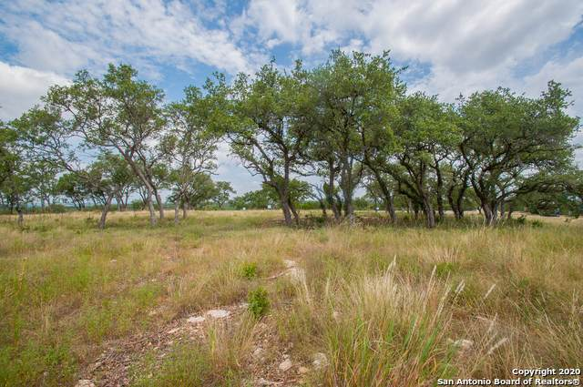 0 Tbd, Canyon Lake, TX 78133 (MLS #1468971) :: The Heyl Group at Keller Williams