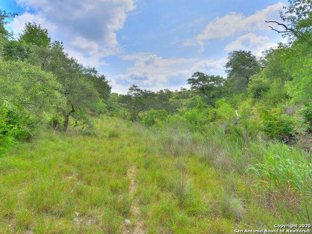 LOT 27 Coleman Springs, Boerne, TX 78006 (MLS #1469453) :: The Castillo Group