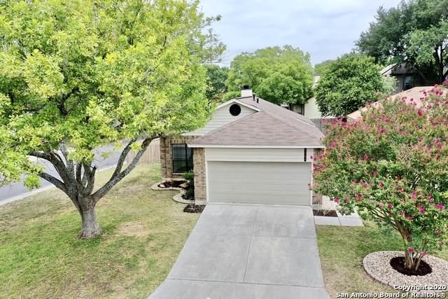 5803 Spring Cabin, San Antonio, TX 78247 (MLS #1469464) :: EXP Realty