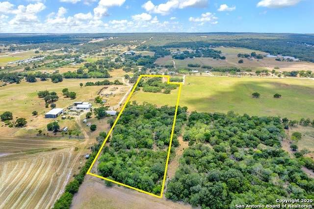 1384 County Road 342, La Vernia, TX 78121 (MLS #1469525) :: The Real Estate Jesus Team