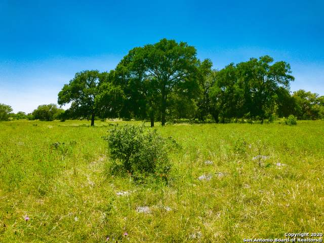LOT 53 Sabinas Creek Ranch, Boerne, TX 78006 (MLS #1469615) :: The Castillo Group
