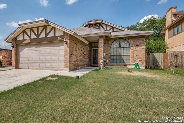 3231 Tree Grove Dr, San Antonio, TX 78247 (MLS #1469686) :: The Glover Homes & Land Group