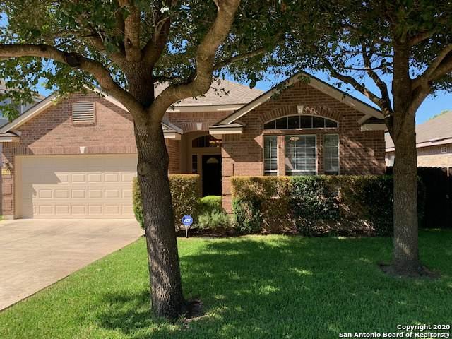 24514 Alamosa Falls, San Antonio, TX 78255 (MLS #1469778) :: Alexis Weigand Real Estate Group