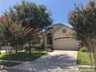 304 Fritz Way, Cibolo, TX 78108 (MLS #1469803) :: BHGRE HomeCity San Antonio