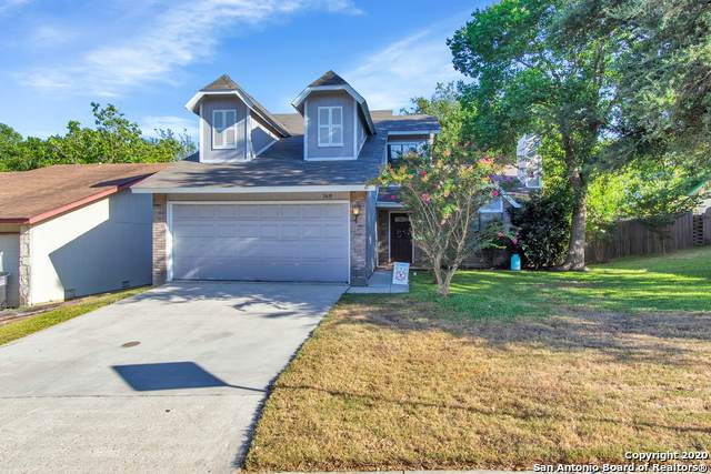 5419 Mountain Vista Dr, San Antonio, TX 78247 (MLS #1469890) :: The Castillo Group