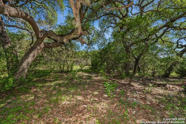 3620 LOT 2 Rust, Spring Branch, TX 78070 (MLS #1469909) :: Maverick