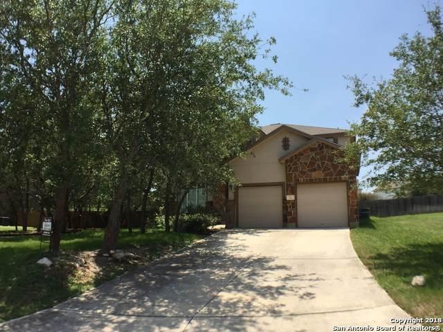 111 Roan Trace, San Antonio, TX 78258 (MLS #1470011) :: Exquisite Properties, LLC