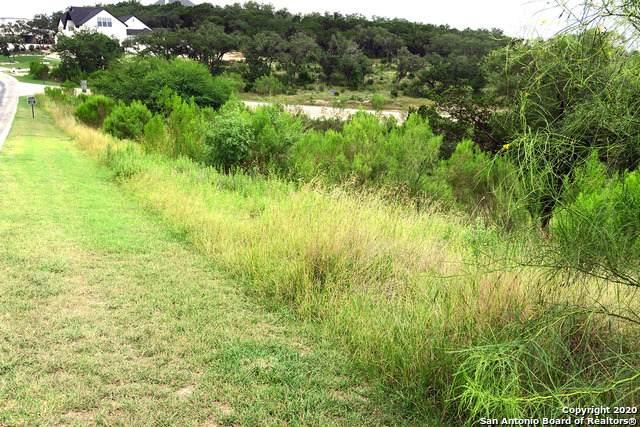 20718 Blue Quail Run, San Antonio, TX 78256 (MLS #1470150) :: Carolina Garcia Real Estate Group