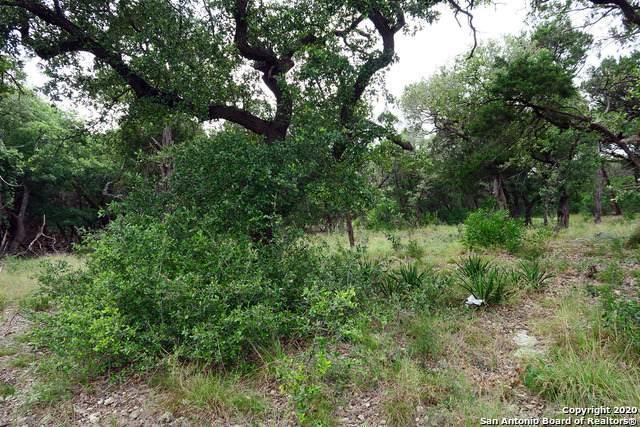 8831 Falcon Pl, San Antonio, TX 78256 (MLS #1470153) :: Carolina Garcia Real Estate Group