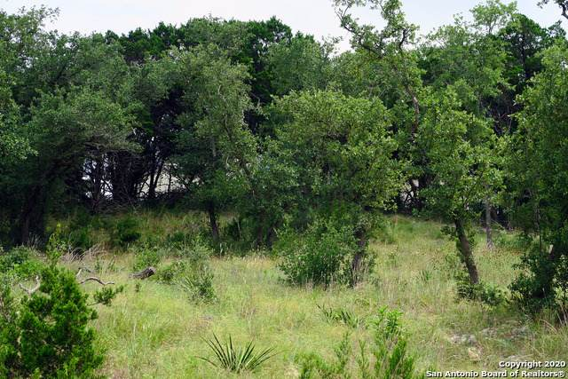20627 Osprey Way, San Antonio, TX 78256 (MLS #1470165) :: Carolina Garcia Real Estate Group