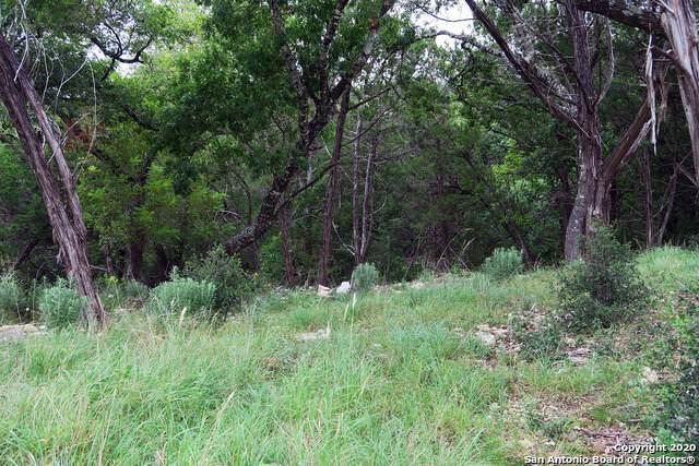20718 Osprey Way, San Antonio, TX 78256 (MLS #1470175) :: Carolina Garcia Real Estate Group