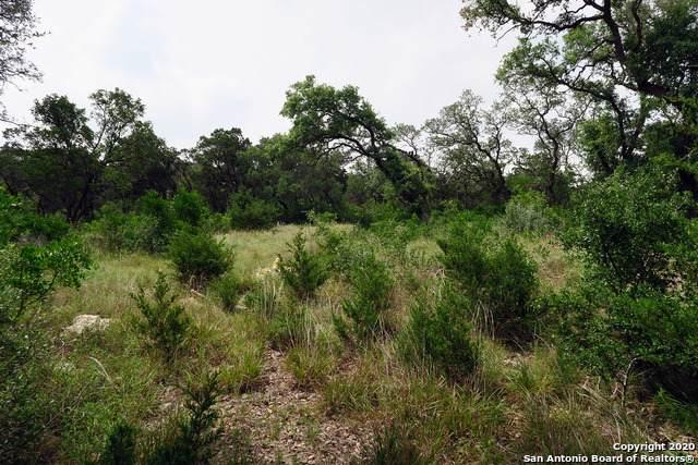 8823 Falcon Pl, San Antonio, TX 78256 (MLS #1470179) :: Carolina Garcia Real Estate Group