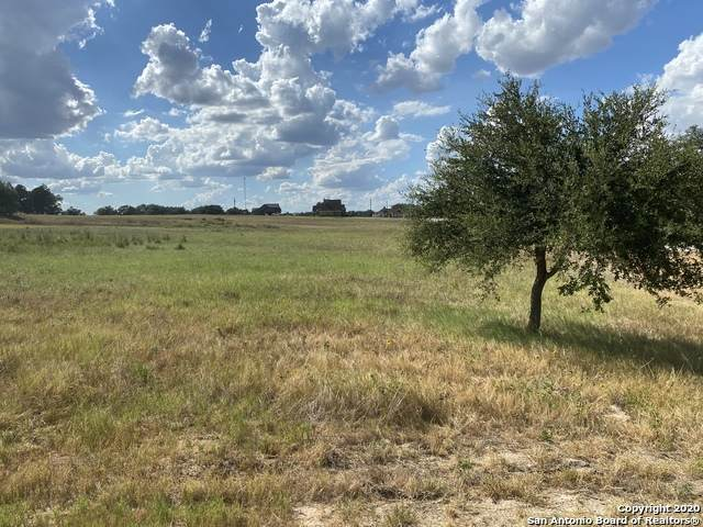 113 N Abrego Lake Dr, Floresville, TX 78114 (MLS #1470279) :: EXP Realty