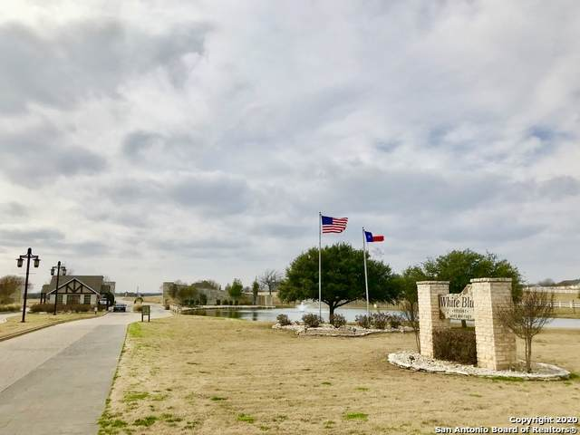 8003 Fawn Dr, Whitney, TX 76692 (MLS #1470456) :: The Mullen Group   RE/MAX Access