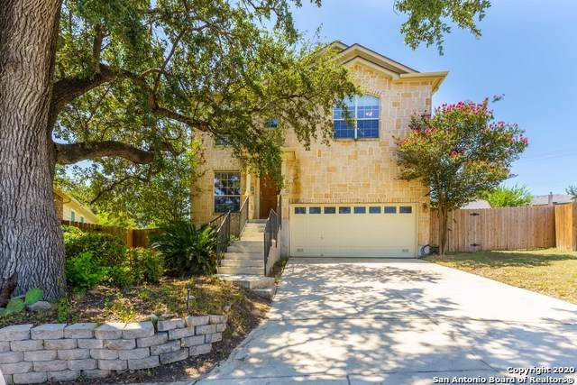 10606 Aster Cyn, Helotes, TX 78023 (MLS #1470459) :: The Heyl Group at Keller Williams