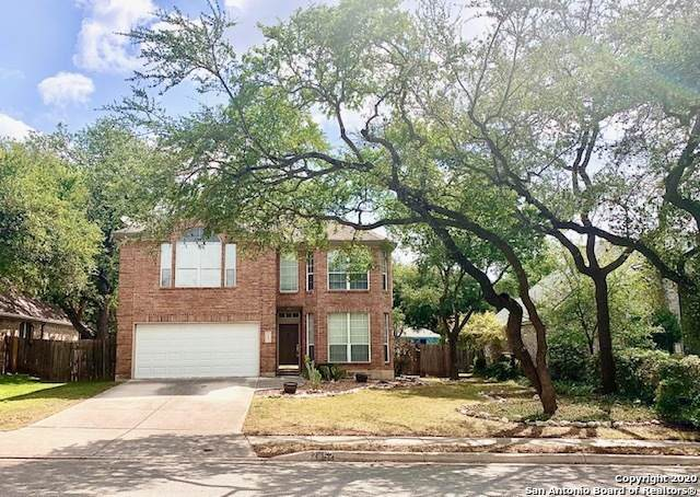 2452 Tree Branch, Schertz, TX 78154 (MLS #1471260) :: Carter Fine Homes - Keller Williams Heritage
