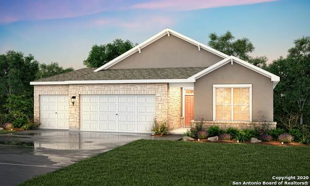 2806 Tortuga Verde, San Antonio, TX 78245 (MLS #1471434) :: The Mullen Group | RE/MAX Access