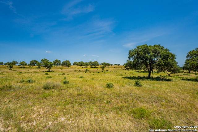 12 Stanton Rd, Johnson City, TX 78636 (#1471776) :: The Perry Henderson Group at Berkshire Hathaway Texas Realty