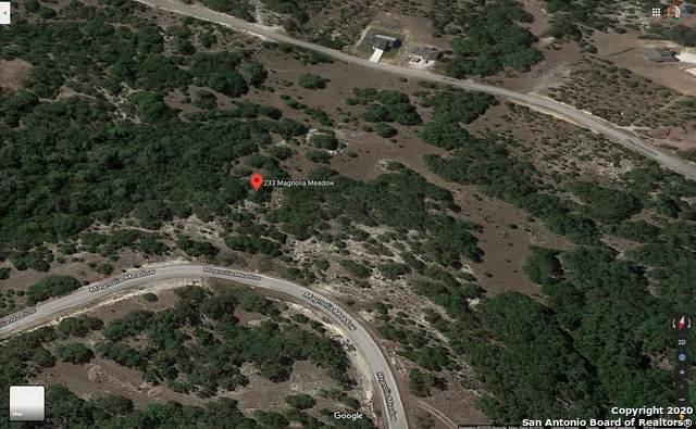 233 Magnolia Meadows, Canyon Lake, TX 78133 (MLS #1472036) :: The Heyl Group at Keller Williams