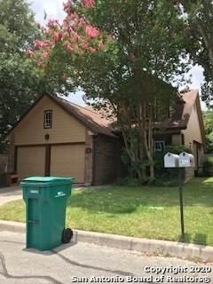 126 Francis Ave, Boerne, TX 78006 (MLS #1472137) :: Reyes Signature Properties
